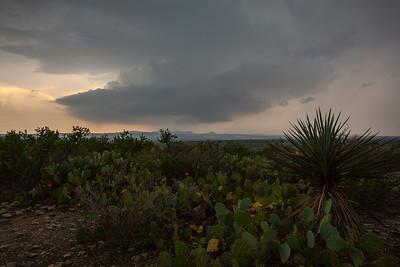 COA-2012-008: , Mpo. Acuña, COA, Mexico