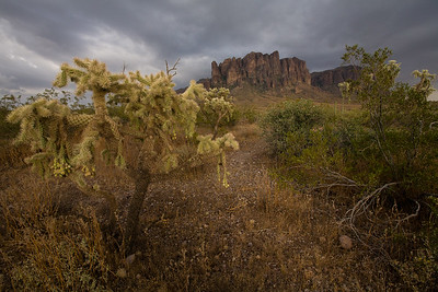 AZ-2008-036: Apache Junction, Maricopa County, AZ, USA