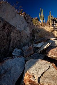 AZ-2009-061: Phoenix, Maricopa County, AZ, USA