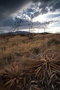 AZ-2009-018: , Santa Cruz County, AZ, USA