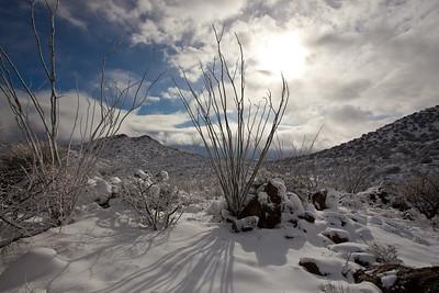 AZ-2011-051: Redington Pass, Pima County, AZ, USA