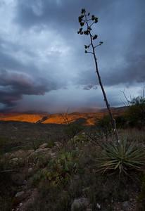 AZ-2010-099: , Pima County, AZ, USA