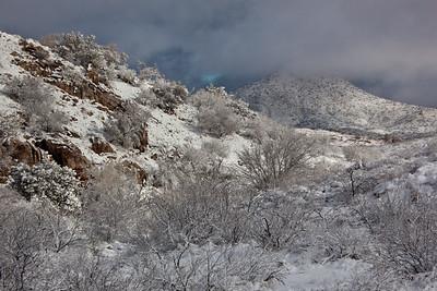 AZ-2011-045: Redington Pass, Pima County, AZ, USA
