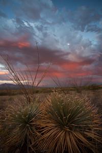 AZ-2010-127: , Cochise County, AZ, USA