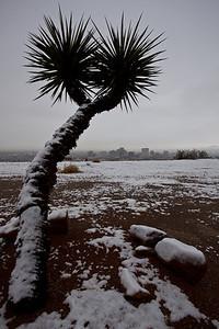 TX-2009-180: El Paso, El Paso County, TX, USA