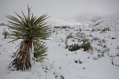 TX-2009-194: El Paso, El Paso County, TX, USA