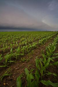 IL-2008-031: , Logan County, IL, USA