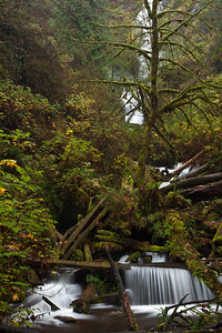 OR-2009-125: Munson Creek Falls, Tillamook County, OR, USA
