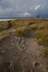 OR-2009-100: Pacific City, Tillamook County, ME, USA