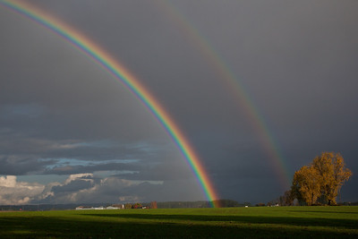 OR-2009-127: Willamette Valley, Washington County, OR, USA