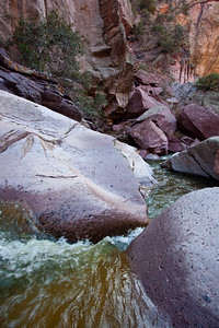 NM-2010-070: Whitewater Canyon, Catron County, NM, USA