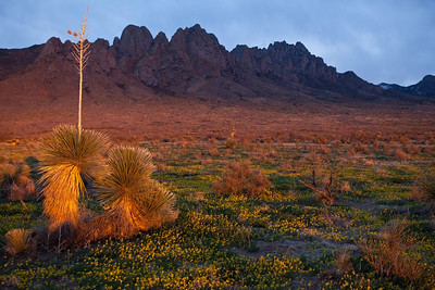 NM-2010-119: Organ Mountains, Dona Ana County, NM, USA
