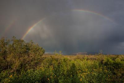 TX-2013-332: Sierra Blanca, Hudspeth County, TX, USA