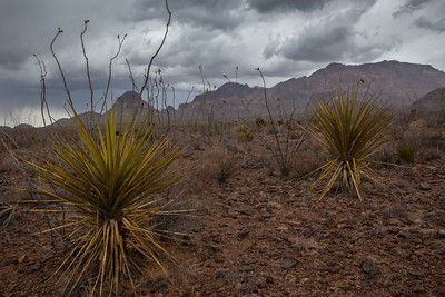 TX-2013-213: Eagle Mountains, Hudspeth County, TX, USA