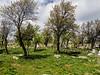 Modern cemetery, Uzuncaburç, Turkey, and the foot of an ancient tower
