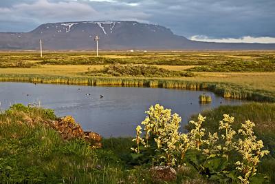 Iceland - Lake Mývatn