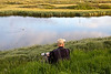 Our guide, Icelandic birding expert and wildlife photographer Jóhann Óli Hilmarsson.<br /> <br /> 21:52:50 GMT, June 20, 2010, Mývatn, Iceland
