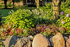 D247-2016 Flower beds at main entrance<br /> <br /> County Farm Park, Washtenaw County, Ann Arbor<br /> Taken September 4, 2016