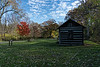 Log cabin and maple tree