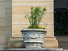 D185-2014  Decorative planter in front of Alumni Memorial Hall (UMMA)<br /> <br /> University of Michigan Central Campus, Ann Arbor<br /> July 4, 2014