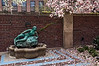 "'Sea Nymph' (ceramic, 1938) surrounded by a surf or at least a surfeit of magnolia petals.<br /> <br /> The UM's website for public art on the campus says of this piece<br /> ""Designed by Gerald Mast and executed by Clivia Morrison (formerly Calder) as part of the Federal Arts Program of the WPA. The materials were paid for by the Michigan League as sponsors of this WPA project. Sponsors of pieces became their owners when the Federal Arts Program was closed in 1940.""<br /> For more about all public art on all the campus venues, go to <a href=""http://public-art.umich.edu/the_collection/"">http://public-art.umich.edu/the_collection/</a><br /> <br /> The secondary wall plaque, below the title plaque, describes the 1988 restoration of the fountain.  It stands against the outer (east) wall of the Courtyard Garden of the Michigan League.<br /> <br /> Taken May 4, 2013."