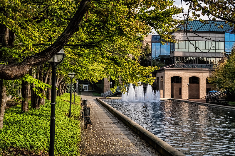 Campus scene in early autumn