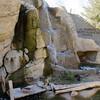 15 02-06 Calm Zoo 675