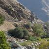 14 07-20 canyon 0793
