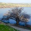 16 02-07 Lake Ming 1902