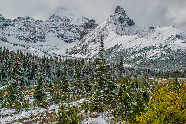Rocky Mountains and Other Landscapes