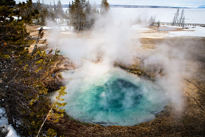Yellowstone Thermal