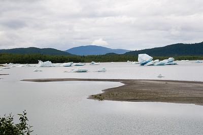 08-06-24_Mendenhall Glacier_0021