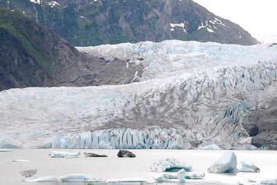 08-06-24_Mendenhall Glacier_0037