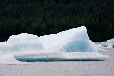 08-06-24_Mendenhall Glacier_0054