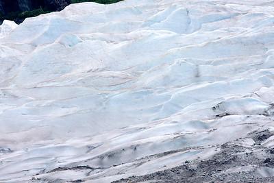 08-06-24_Mendenhall Glacier_0085