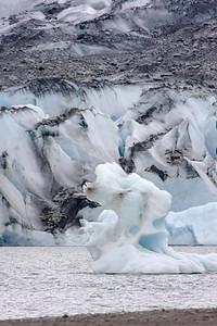 08-06-24_Mendenhall Glacier_0072