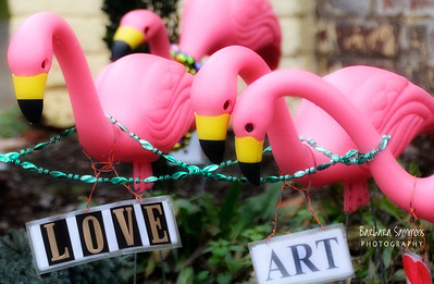 Pink Flamingos, Love and Art!