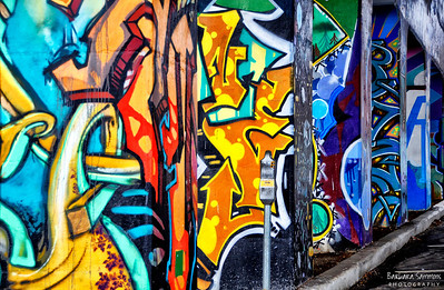Graffiti art ~ columns under I-240 Downtown Asheville