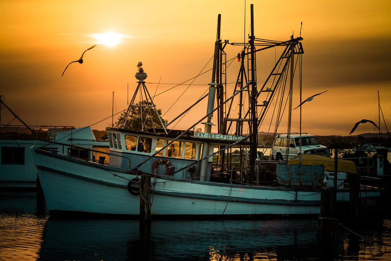 Fishing boat on the Clarence River, Iluka NSW