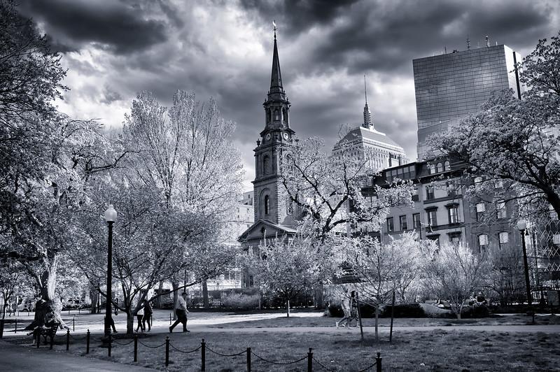 Boston Commons B & W