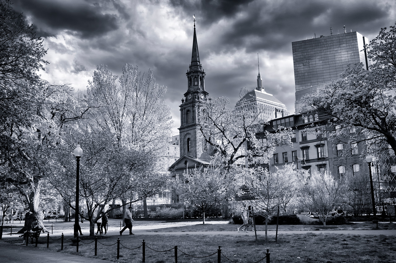 Boston Commons B & W