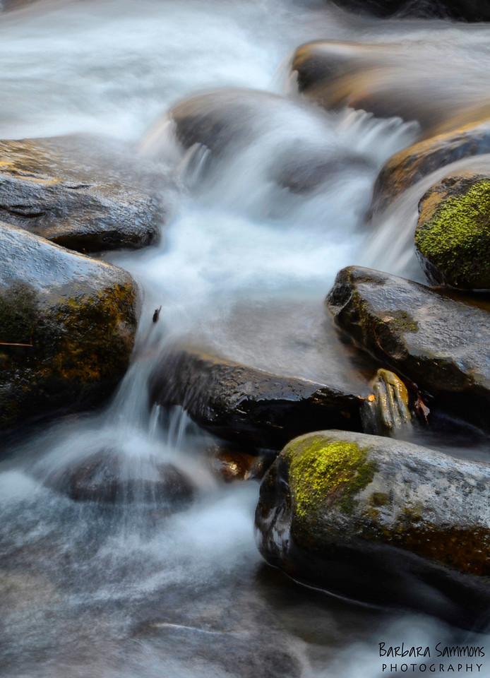 Middle Prong Little River ~ Tremont, TN ~ Great Smoky Mountain National Park