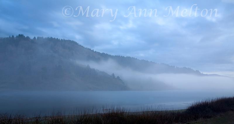 Freshwater Lagoon, Redwoods National Park 4295