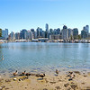Downtown Vancouver from Stanley Park