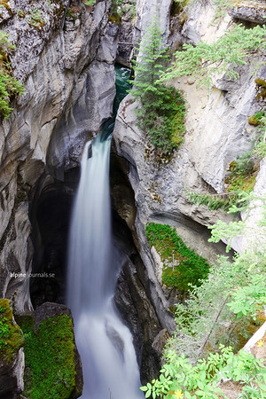 Maligne Canyon, Jasper National Park. The Maligne Canyon trail is an easy boardwalk loop with optional side trails. There are six bridge crossings, offering views over different secions of the gorge. The main loop is 4.4 km and equipped with interpretive signs.