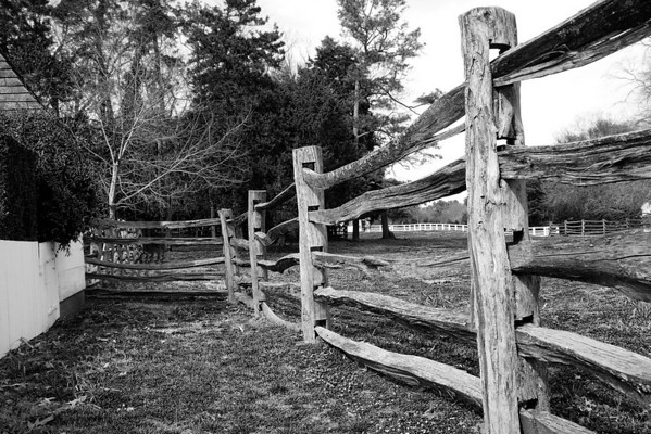 Wooden Fence-1