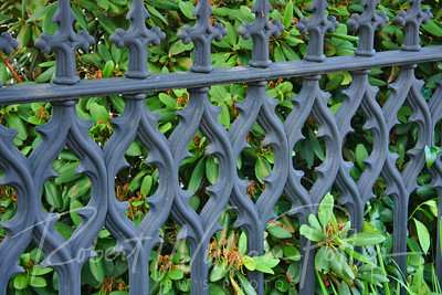 9738-Wrought Iron Fence