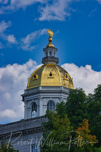 9728-Golden Dome