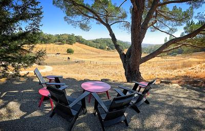 Epoch winery - inviting views