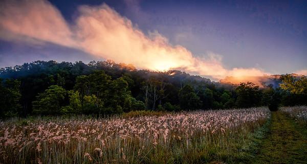 Sunrise Mist Brecksville Reservation